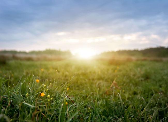 Faites du soleil votre allié