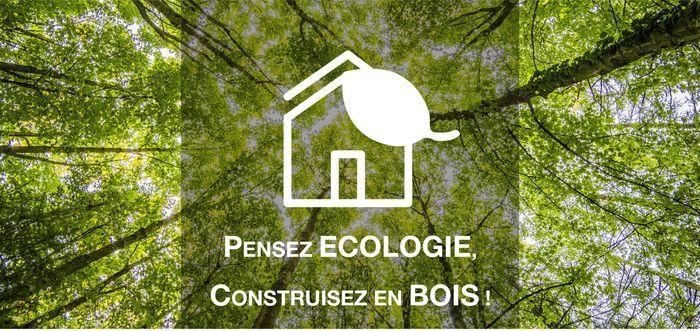 ecologie bois 2
